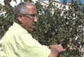 Medi Investigation : Tanger : grand écran