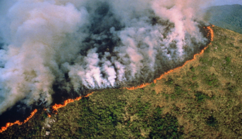 Incendies en Amazonie: l'ONU préoccupée