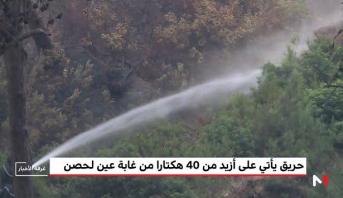 حريق يأتي على حوالي 40 هكتارا من الغطاء الغابوي بإقليم تطوان