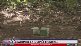 Sénégal: célébration de la journée mondiale de l'environnement à Dakar