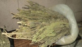 حجز كمية كبيرة من المخدرات بمنزل في فاس