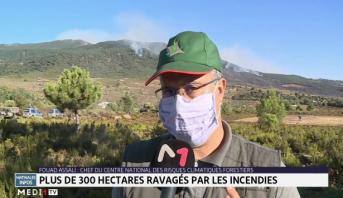 Tazrout: plus de 300 hectares ravagés par les incendies