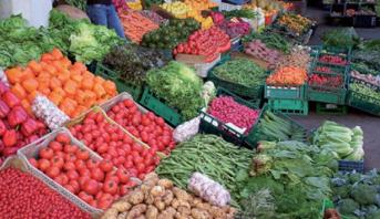Ministère : les opérateurs agricoles maintiennent une cadence normale de leur activité