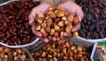 مخطط المغرب الأخضر .. نحو إحداث وحدة لتثمين منتجات التمور بكلميم