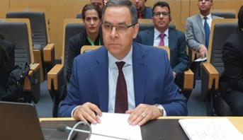 المغرب نائبا للرئيس للجنة الفرعية للاتحاد الإفريقي بشأن القضايا البيئية
