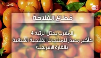 فيديو .. أهمية القطاع الفلاحي ونتائج مخطط المغرب الاخضر