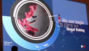 Méditerranée : débat sur l'avenir de la pêche