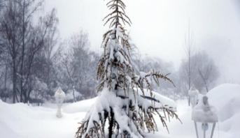 مقاييس التساقطات الثلجية المسجلة بالمملكة اليوم الثلاثاء