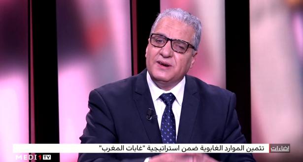 """تثمين الموارد الغابوية ضمن استراتيجية """"غابات المغرب"""""""
