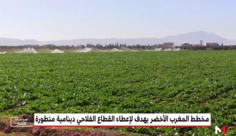 مخطط المغرب الأخضر أعطى حيوية ودينامية للفلاحة والتنمية بالمغرب