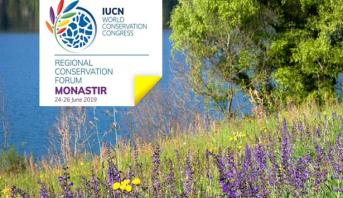مهندس مغربي يحصل على جائزة لجنة التربية والتواصل للاتحاد الدولي لصون الطبيعة