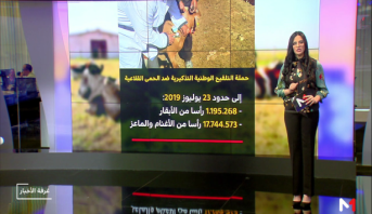 شاشة تفاعلية .. حملة التلقيح الوطنية التذكيرية ضد الحمى القلاعية