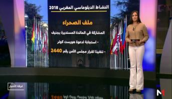 شاشة تفاعلية.. النشاط الدبلوماسي المغربي خلال 2018