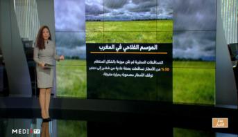 شاشة تفاعلية .. أبرز مؤشرات الموسم الفلاحي في المغرب