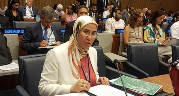 الأمم المتحدة .. الوافي تترأس بنيويورك اجتماعا للمنتدى الإفريقي للتنمية المستدامة