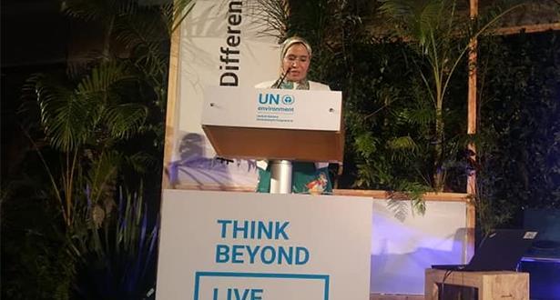 الأمم المتحدة.. إبراز التدابير التي اتخذها المغرب للتوفيق بين متطلبات التنمية والحفاظ على البيئة