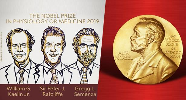 أمريكيان وبريطاني ينالون جائزة نوبل للطب لسنة 2019