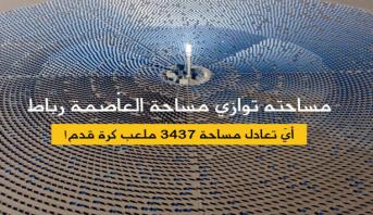"""البنك الدولي: المغرب تبني """"رؤية استراتيجية وواضحة"""" من أجل تحقيق تحول طاقي اعتمادا بالدرجة الأولى على الطاقات المتجددة"""