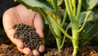 """اتفاقية شراكة بين المغرب ومجموعة """"هوباي فوربون"""" الصينية بخصوص إنتاج جيل جديد من الأسمدة"""