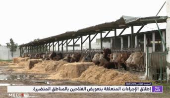 وزارة الفلاحة.. إطلاق الإجراءات المتعلقة بتعويض الفلاحين بالمناطق المتضررة