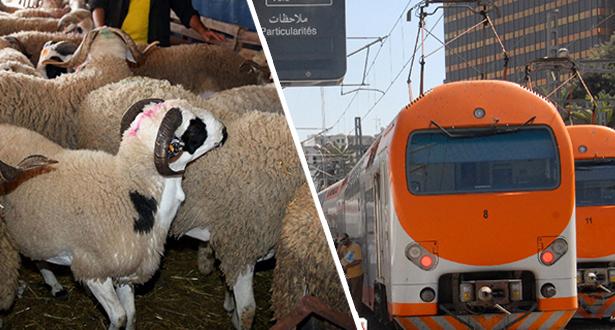 بمناسبة عيد الأضحى .. ONCF تضع برمجة خاصة لحركة القطارات