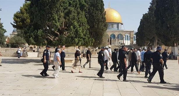 عشرات المستوطنين يقتحمون باحات المسجد الأقصى بحماية شرطة الاحتلال
