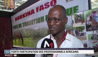 Salon du cheval d'El Jadida : Forte participation des professionnels africains