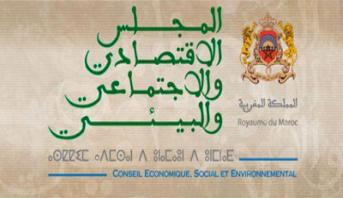 """Le CESE recommande un programme """"intensif"""" pour faire émerger 30.000 PME en 5 ans"""