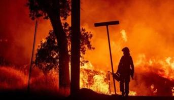 أزيد من 900 إطفائي يكافحون حرائق وسط البرتغال