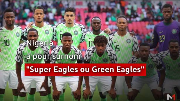 La route vers l'Egypte > CAN 2019: présentation du Nigeria