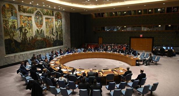 security council un 250320
