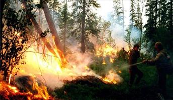 الطوارئ الروسية: الحرائق تدمر أزيد من 140 ألف هكتار من الغابات في سيبيريا