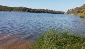 وزارة الفلاحة توضح سبب نقوق الأسماء ببحيرة محمية سيدي بوغابة