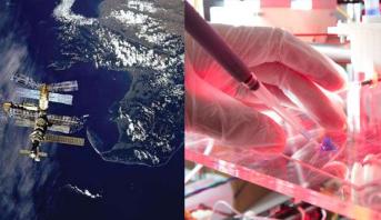 مختبر روسي ينجح في تجربة تجميع أنسجة الإنسان في الفضاء بواسطة طابعة إحيائية ثلاثية الأبعاد