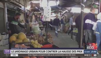 Ramadan en Syrie: le jardinage urbain pour contrer la hausse des prix