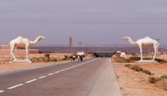 837 مرشحا يخوضون غمار الانتخابات الجماعية بإقليم طانطان