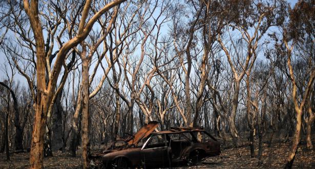 الأمطار تتساقط أخيرا على أستراليا وتساهم في إخماد الحرائق