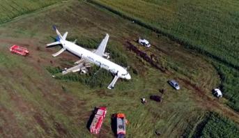 Russie: un avion percute un oiseau et atterrit d'urgence dans un champ agricole