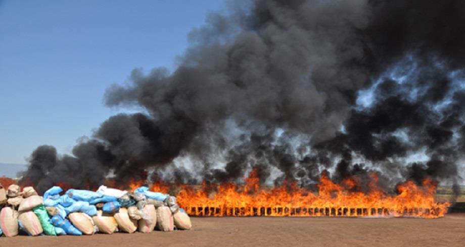 Laâyoune: destruction d'une grande quantité de drogue et de produits de contrebande
