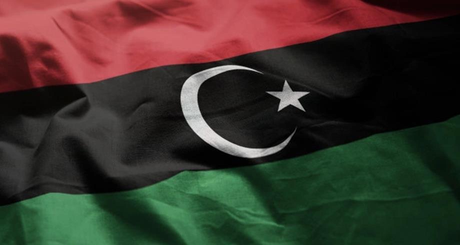 وفدا مجلس النواب والدولة الليبيين يبحثان في مصر إجراءات الاستفتاء على الدستور
