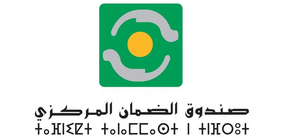 ضيف التحرير: صندوق الضمان المركزي يكشف حصيلة القروض الممنوحة للمقاولات منذ بداية الجائحة