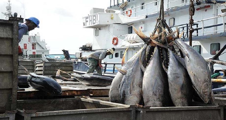 Gabon-UE: accord de 26 millions d'euros pour une gestion durable de la pêche thonière
