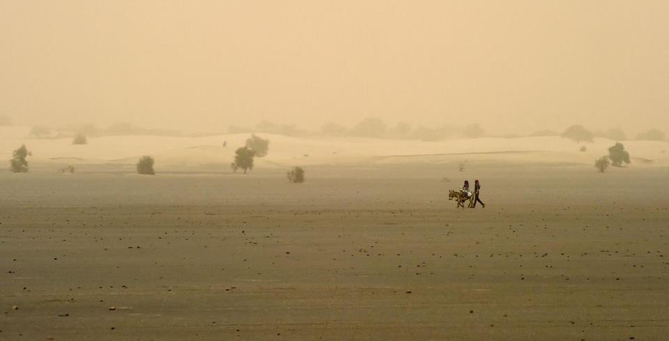 Sahel: radiographie de la région avec David Labau