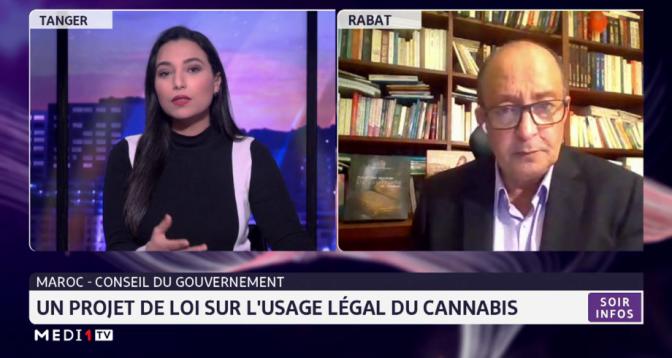 Focus sur le projet de loi portant sur l'usage légal du cannabis au Maroc