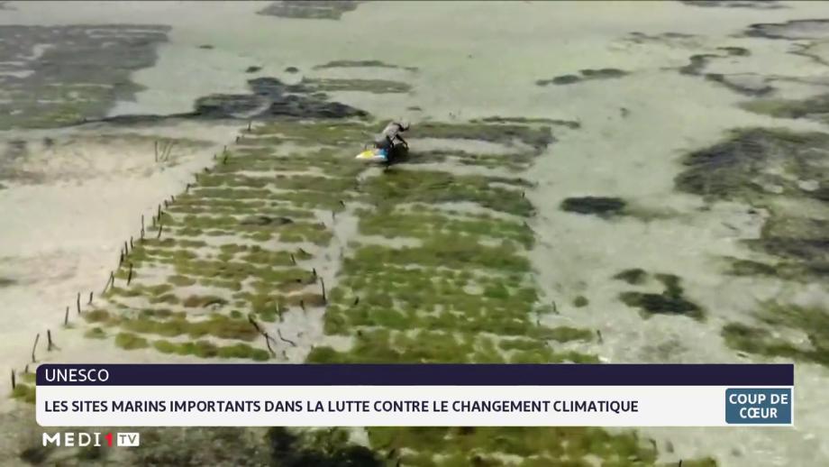 Unesco: les sites marins importants dans la lutte contre le changement climatique