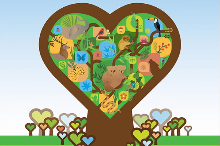 تخليدا لليوم الدولي للغابات: فعاليات مدنية تؤكد على أهمية الانخراط في جهود الحفاظ على الثروة الغابوية
