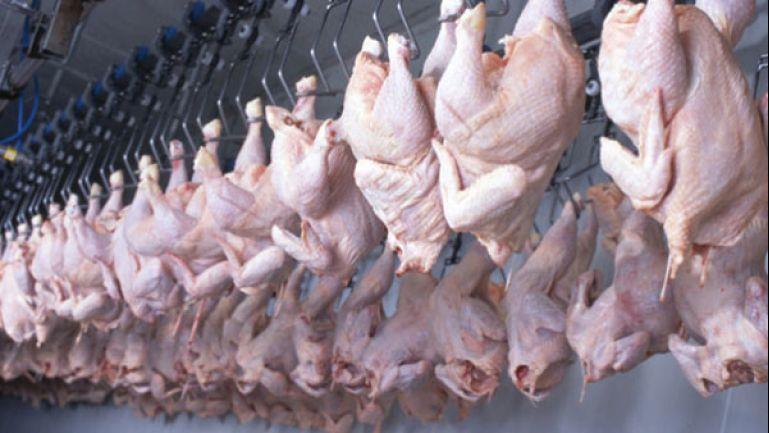 الجزائر.. دعوات لمقاطعة اللحوم البيضاء بعد الارتفاع الصاروخي في أسعارها