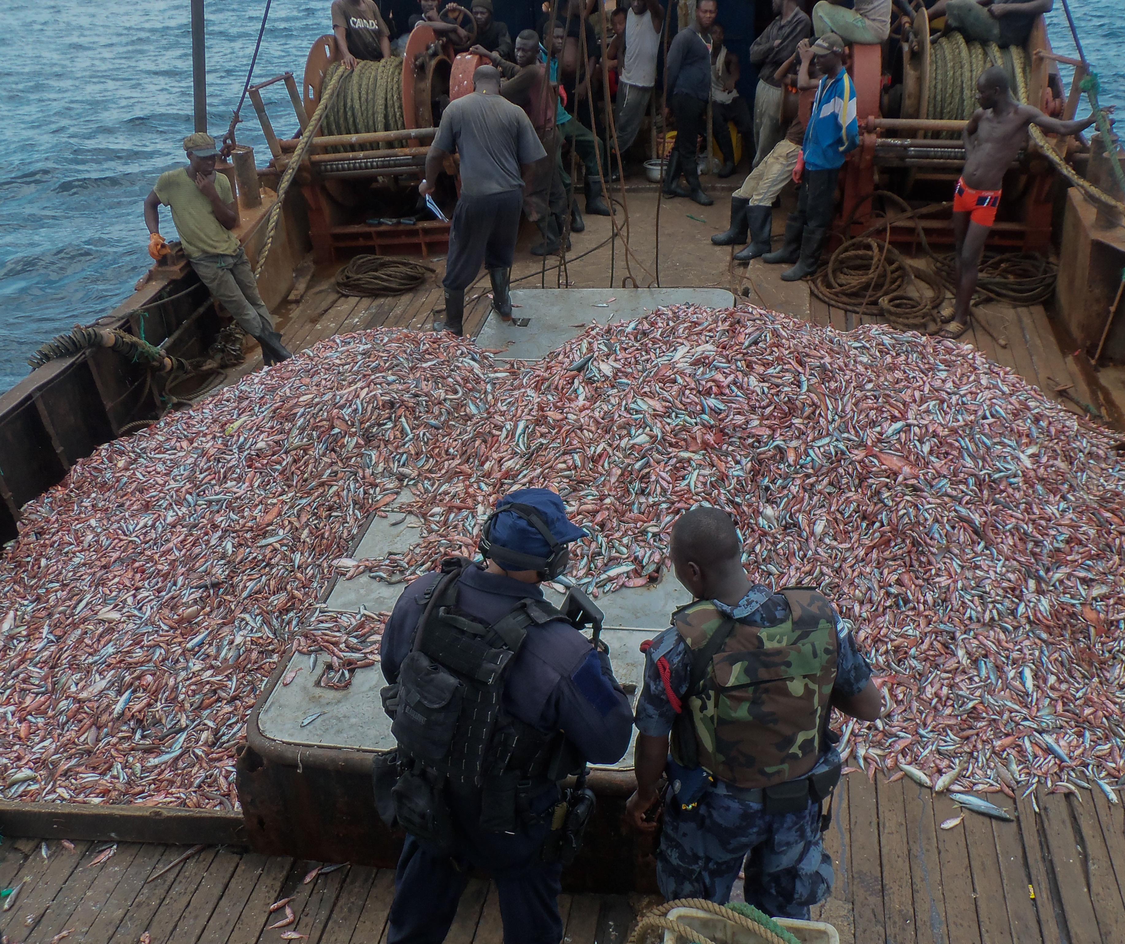 الثروة السمكية الإفريقية المستباحة