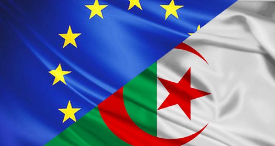 البرلمان الأوروبي : الجزائر تجتاز وضعا سياسيا مأساويا