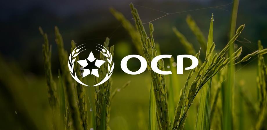 OCP: hausse du chiffre d'affaires à 56,18 MMDH en 2020